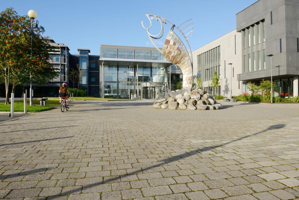 IT Sligo Salmon of Knowledge fish statue